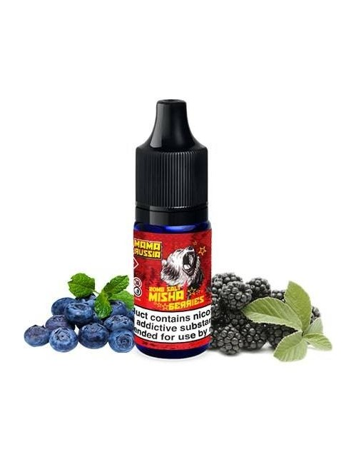 Buy MAMA RUSSIA Salts MISHA BERRIES at Vape Shop – 7Vapes
